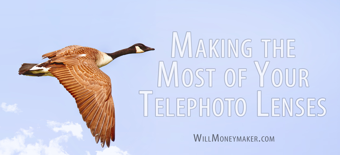 Making the Most of Your Telephoto Lenses